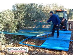 Récolte des olives avec la nacelle Novaxion